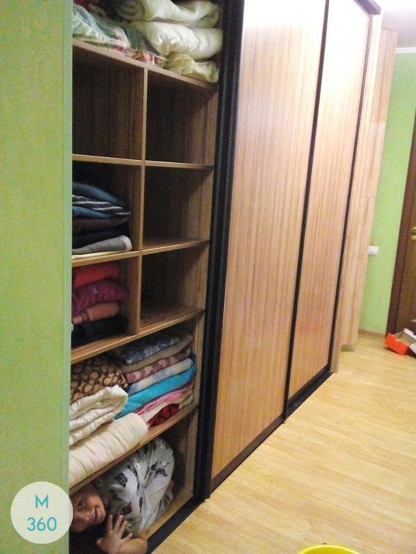 Шкаф для дачи Дессау Арт 006118353