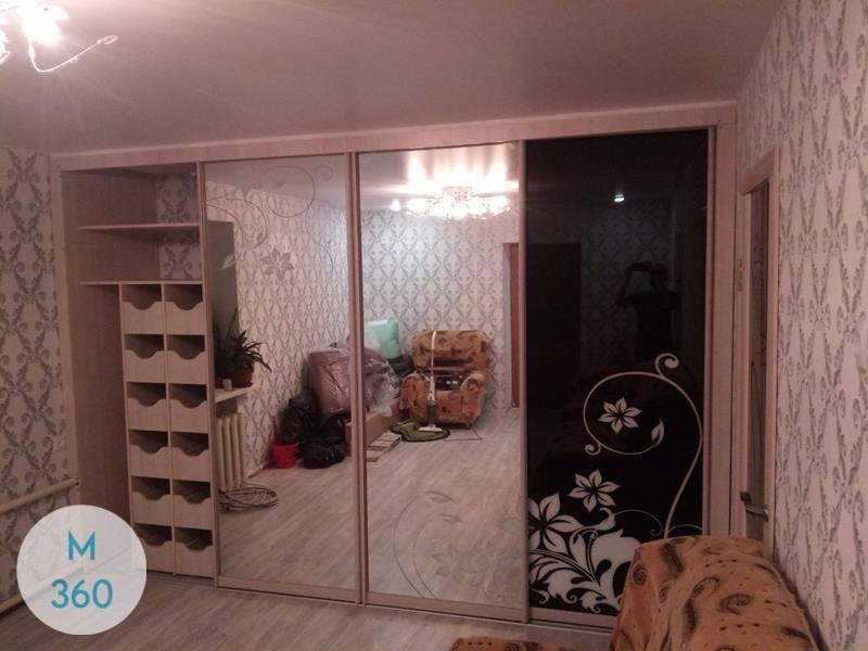 Встроенный шкаф купе Шугар-Ленд Арт 008900595